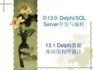第 13 章  Delphi/SQL Server 开发与编程