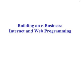Building an e-Business: Internet and Web Programming