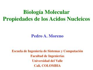 Biología Molecular Propiedades de los Acidos Nucleicos