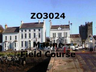 ZO3024 Marine Field Course