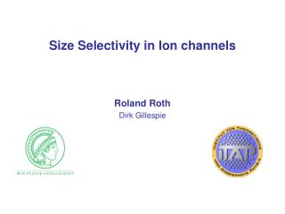 Size Selectivity in Ion channels