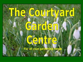 The Courtyard Garden Centre