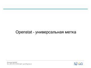 Компания  SpyLOG Тел.  (495)  234-27-80 . E-mail: expert@spylog.ru
