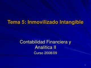 Tema 5: Inmovilizado Intangible