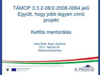 TÁMOP 3.3.2-08/2-2008-0064 jelű  Együtt, hogy jobb legyen című projekt Kettős mentorálás