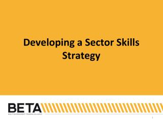 Developing a Sector Skills Strategy