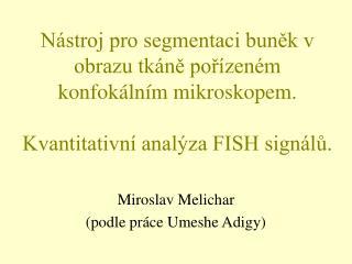 Miroslav Melichar (podle pr�ce Umeshe Adigy)