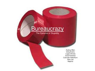 Bureaucrazy The Epitome of Stupidity
