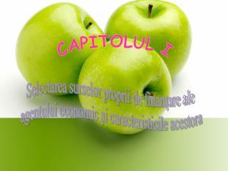 CAPITOLUL I