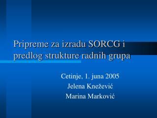 Pripreme za izradu SORCG i predlog strukture radnih grupa