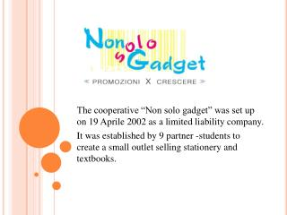 "The cooperative ""Non solo gadget"" was set up on 19 Aprile 2002 as a limited liability company."