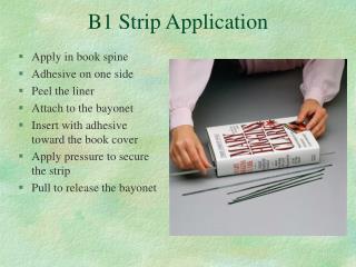 B1 Strip Application