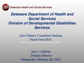 Delaware Department of Health and Social Services Division of Developmental Disabilities Services