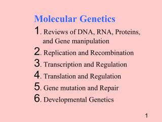 Molecular Genetics 	1. Reviews of DNA, RNA, Proteins, 	     and Gene manipulation