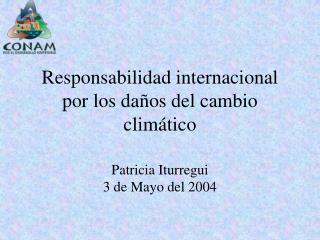 Responsabilidad internacional por los daños del cambio climático