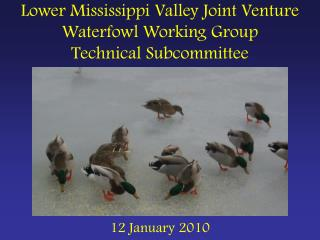 Lower Mississippi Valley Joint Venture Waterfowl Working Group Technical Subcommittee