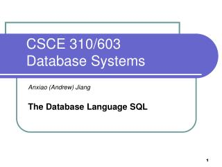 CSCE 310/603  Database Systems