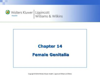Chapter 14  Female Genitalia