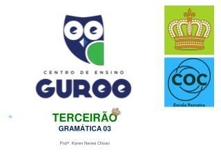 TERCEIRÃO GRAMÁTICA 03