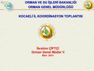 İbrahim ÇİFTÇİ  Orman Genel Müdür V. Mart  2013