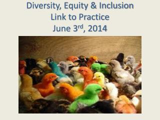 Diversity, Equity & Inclusion Link to Practice June 3 rd , 2014