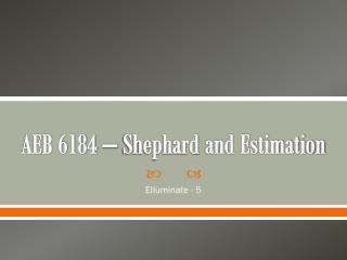 AEB 6184 –  Shephard  and Estimation