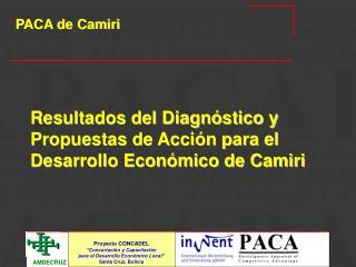 Resultados del Diagnóstico y Propuestas de Acción para el Desarrollo Económico de Camiri