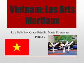 Vietnam: Les Arts  Martiaux
