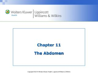 Chapter 11 The Abdomen