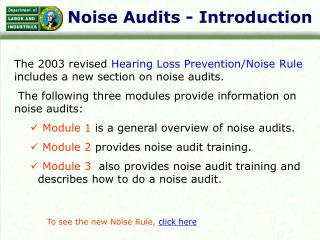 Noise Audits - Introduction