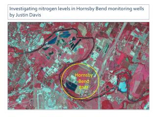 Investigating nitrogen levels in Hornsby Bend monitoring wells by Justin Davis