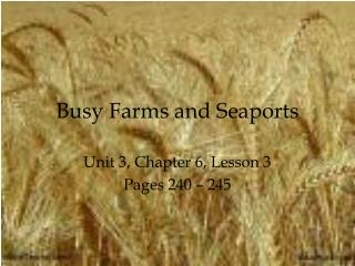 Busy Farms and Seaports