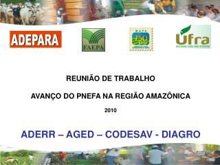 REUNIÃO DE TRABALHO AVANÇO DO PNEFA NA REGIÃO AMAZÔNICA 2010