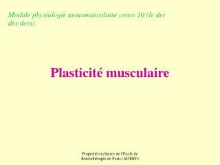 Plasticité musculaire