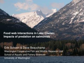 Food web interactions in Lake Chelan:  Impacts of predation on salmonids