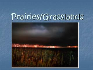 Prairies/Grasslands