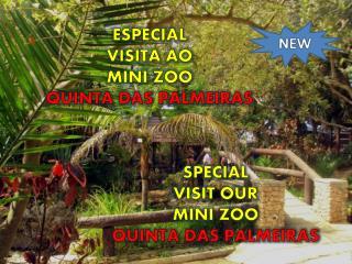 SPECIAL VISIT OUR  MINI ZOO QUINTA DAS PALMEIRAS