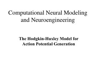 Computational Neural Modeling and Neuroengineering