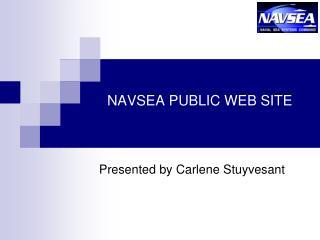 NAVSEA PUBLIC WEB SITE