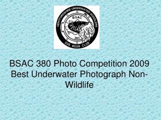 BSAC 380 Photo Competition 2009 Best Underwater Photograph Non-Wildlife