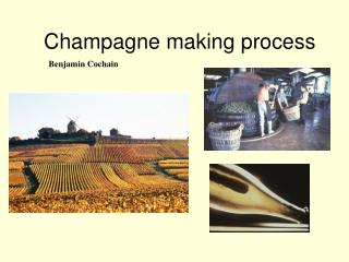 Champagne making process