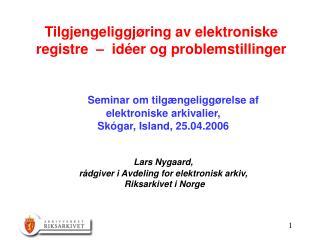 Tilgjengeliggjøring av elektroniske registre  –  idéer og problemstillinger