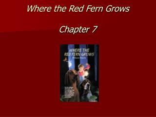 Where the Red Fern Grows Chapter 7