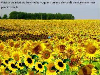 Voici ce qua  crit Audrey Hepburn, quand on lui a demand  de r v ler ses trucs pour  tre belle...