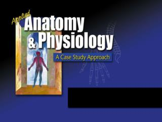 The digestive system - Best American Career College - Flash Intro