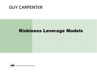 Riskiness Leverage Models