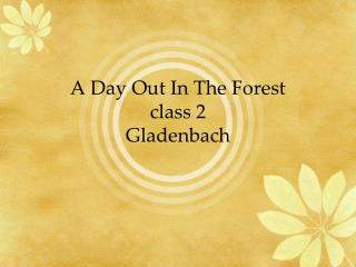 A Day Out In The Forest class 2 Gladenbach
