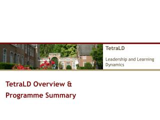 TetraLD Leadership and Learning  Dynamics