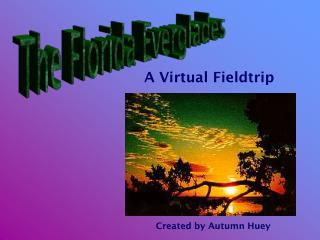 A Virtual Fieldtrip