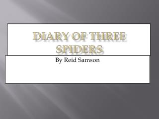 Diary of Three Spiders